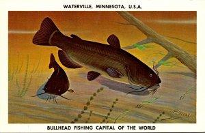 Minnesota Watervlle Bullhead Fishing Capitol Of The World