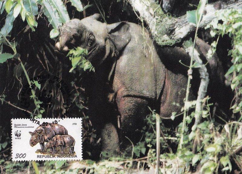 Sumatran Rhinoceros Rare Indonesia WWF Ltd Stamp FDC Postcard