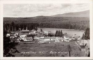 Hazelton BC British Columbia Town View Birdseye Unused W.W.W. RPPC Postcard F18