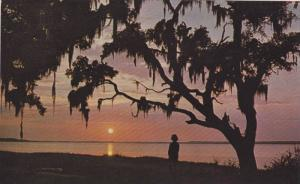 Sea Pines Plantation, Sunset, Calibogue Cay, Hilton Head, South Carolina, 194...