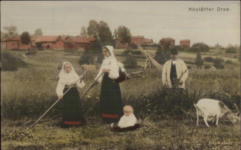 Denmark or Norway? Native Women Farming c1910 Tinted Real Photo Postcard