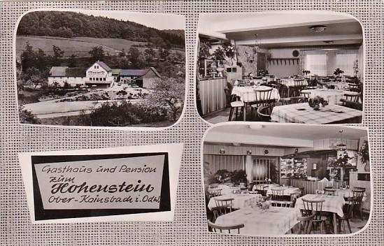 Ober Kainsbach birds eye view of the mead corporation kingsport tennessee hippostcard