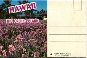 Folder - Hawaii, The Orchid Island (11 Views + Covers + Narrative)