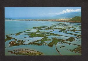 Vietnam Rice Paddy Paddies Qui Nhon An Khe South Viet Nam Postcard Asian South