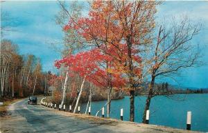 Lincolnton Georgia~Greetings~Lakeside Dr Clark Hill Area~Autumn~1961 Postcard