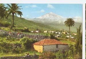 Postal 044686 : Tenerife Canary Islands