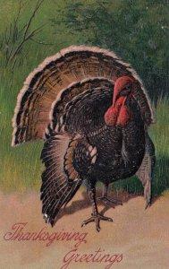 THANKSGIVING Greetings; PU-1901 ; Embossed Wild Turkey