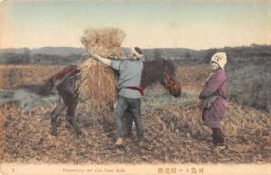 Japan Conveying Cut Rice from Field Antique Postcard J76296