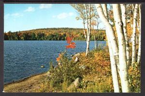 Lake Medora,Keweenaw County,MI BIN
