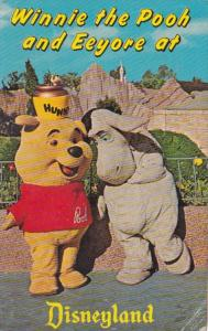Disneyland Winnie The Pooh and Eeyore