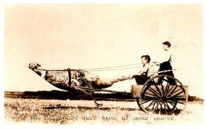 South Dakota Pheasant pulling cart with kids RPC
