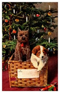 Dogs in a basket , Christmas tree