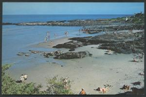 Ogunquit Maine Little Beach Lobster Point Scene Postcard