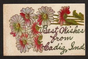 IN Best Wishes from CADIZ INDIANA Postcard PC Flowers