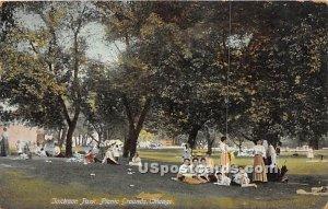 Jackon Park, Picnic Grounds - Chicago, Illinois IL
