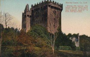 CORK, Ireland, 1900-1910s; Blarney Castle