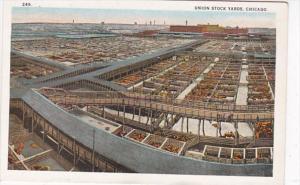 Illinois Chicago Union Stock Yards Curteich