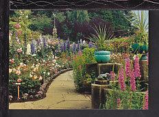 Rose Garden,Butchart Garden,Victoria,BC,Canada Postcard BIN