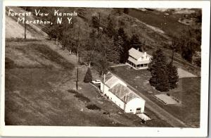 Aerial View of Forrest View Kennels Marathon NY Forest Vintage Postcard P13