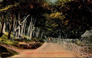 New York Lake George Silver Birches At Silver Bay 1915