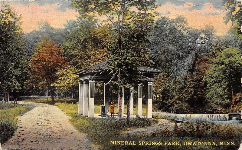 Owatonna Minnesota~Mineral Springs Park~Little Girl & Dog in Pavilion~c1910 PC