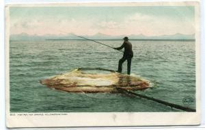 Fish Pot Fishing Hot Springs Yellowstone National Park Detroit Pub postcard