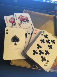 Vintage PIATNIK VIENNA KINGSBRIDGE Sovereign Double Deck Cards , Game Birds