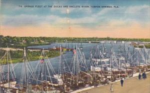 Florida Tarpon Springs Sponge Fleet At The Docks And Anclote River