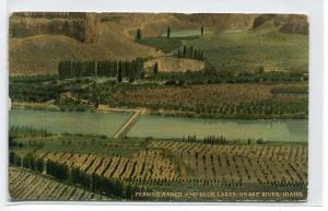 Perrine Ranch Blue Lakes Snake River Idaho 1913 postcard
