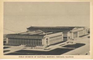 Field Museum Of Natural History  ~ Chicago Illinois IL Postcard