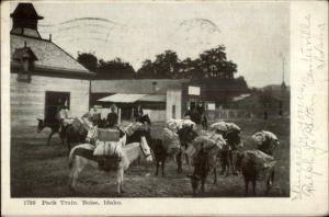 Boise ID Pack Trin c1905 Postcard