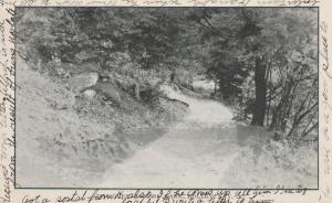 Holley, Orleans County NY, New York - Glen at Lovers Lane - pm 1907 - UDB