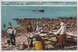 Curing Fish, Gaspe PQ