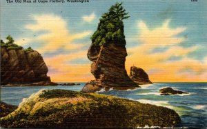 Washington The Old Man Of Cape Flattery