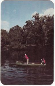 Fishing on the Old Suwannee, unused Postcard