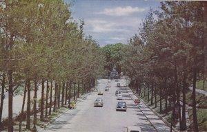 Los Caobos Park , CARACAS , Venezula , 50-60s