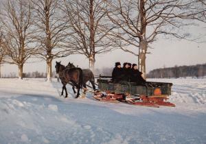 Ontario Mennosite Family on Way Home in Elmira Snow Plough Canadian Postcard