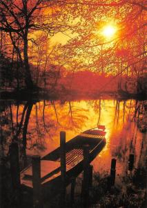 Spreewald Romantik River Boat Sunset Forest