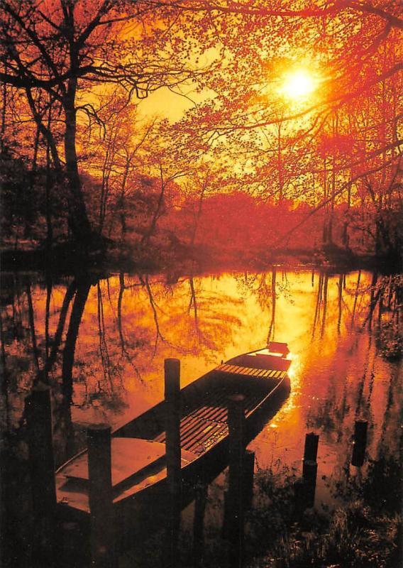 Spreewald Romantik River Boat Sunset Forest
