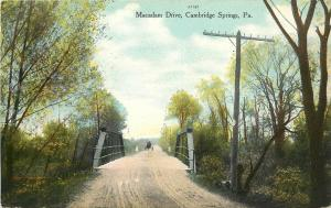 1907-1915 Postcard; Macadam Drive, Cambridge Springs PA Crawford County Unposted