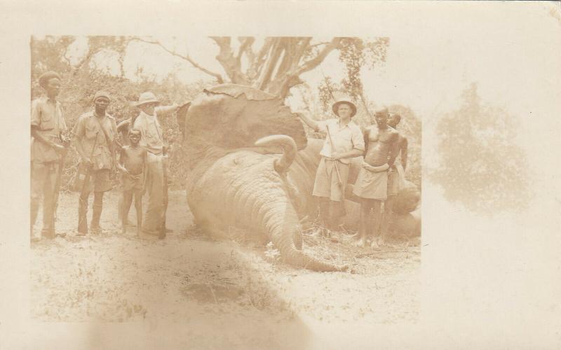 RP: Elephant hunter posing with prey , 00-10s