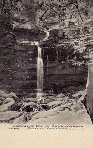New York Platte Cove Japanese Falls Grand Canyon Albertype