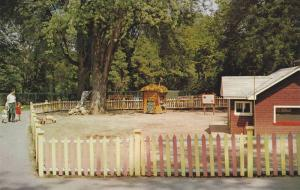 3 little pigs , Storybook Gardens , LONDON , Ontario , Canada , 40-60s