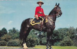 CANADA, 1940-1960's; A Member Of The Famed Royal Canadian Mounted Police