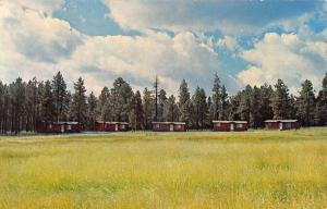 Alpine Arizona Meadow View Cottages Scenic View Vintage Postcard K33939