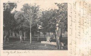H37/ Mankato Minnesota RPPC Postcard c1908 Sibley Park Deer Feeding Man