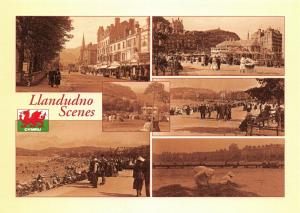 NEW Postcard, Vintage Llandudno Scenes Multi View by Judges 40T