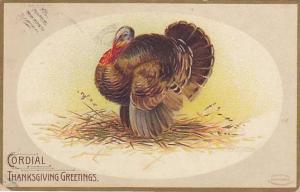 Clapsaddle, Cordial Thanksgiving Greetings, Wild Turkey, PU-1908