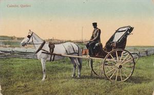 Horse Wagon, Caleche, Quebec, Canada, 1900-1910s