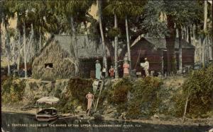Thatched House Banks of Upper Caloosahatchee River FL c1910 Postcard